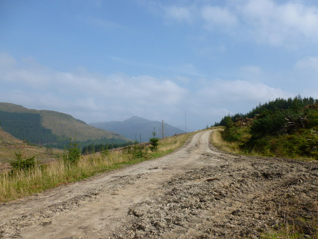 New forestry track above the Lettermay Burn