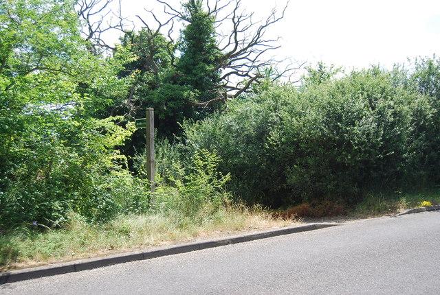 Bridleway off Lemons Hill