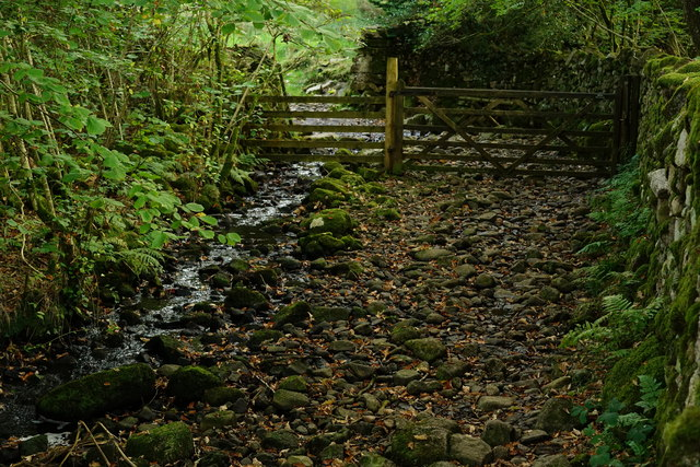 Bridleway Through Bankend Wood