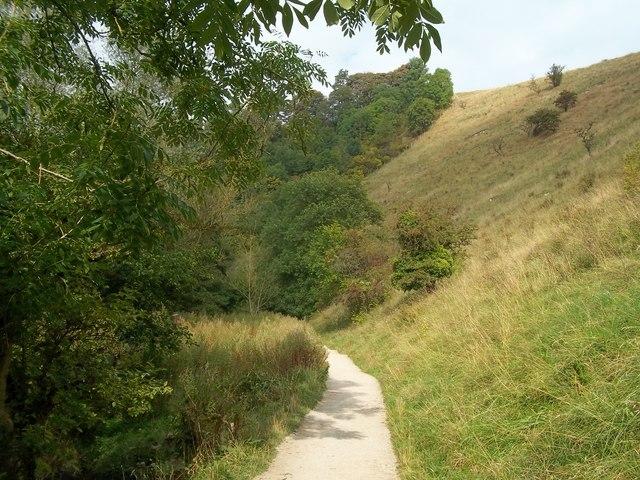 Path near Baley Hill in Dove Dale