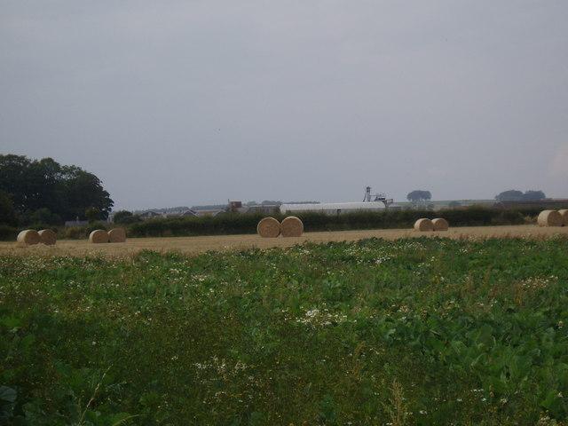 Field near Easthaven