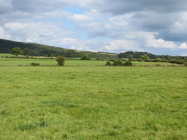 Grass field, Townfoot