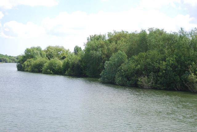 Shoreline, Alton Water