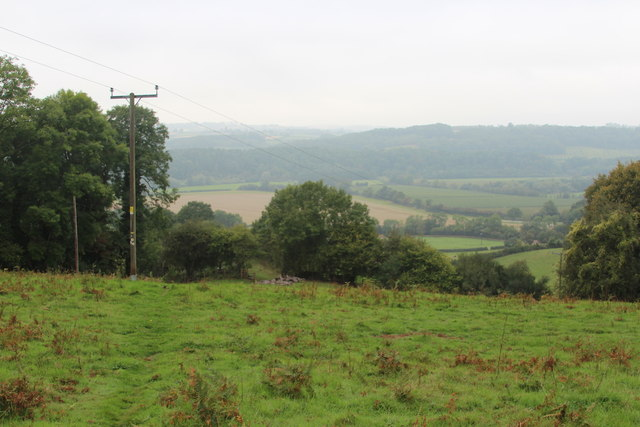 Field near Tinkers Coppice
