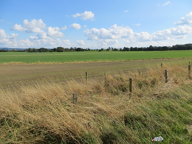 Flat farmland, Annandale