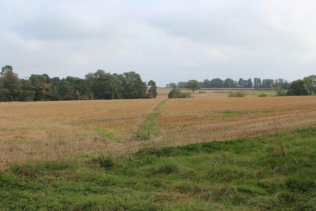 Footpath towards Woodmanton Manor
