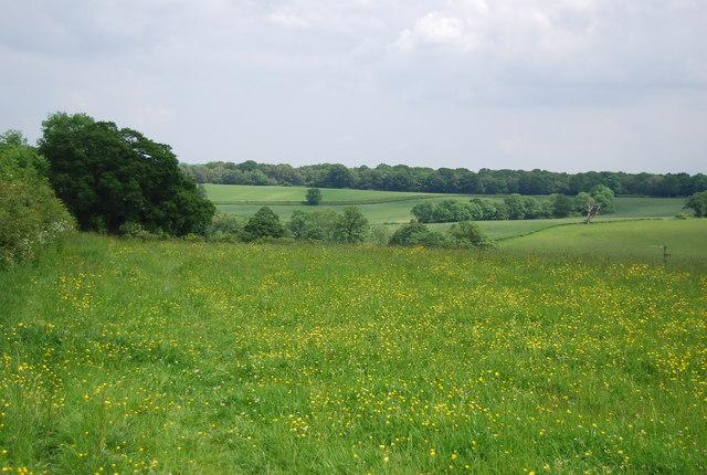Footpath to Owlett's Farm