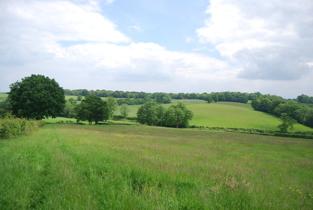 Meadow near Owlett's Farm
