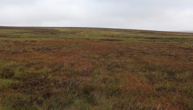 Conistone Moor (2)