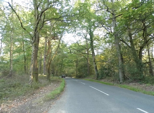 Hound House Road in Winterfold Wood