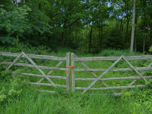 Gates leading into Tugby Wood
