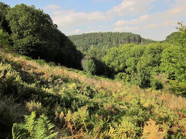 Seaton valley
