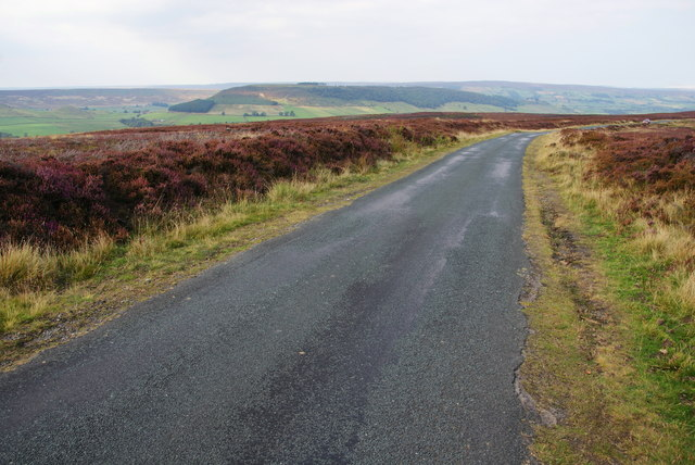 Road above Great Fryup Dale