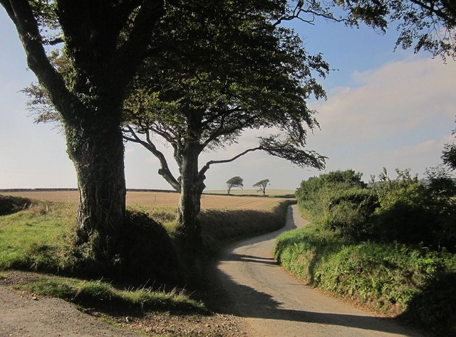 Lane to Polborder
