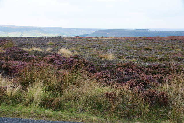 Moorland on Glaisdale Rigg