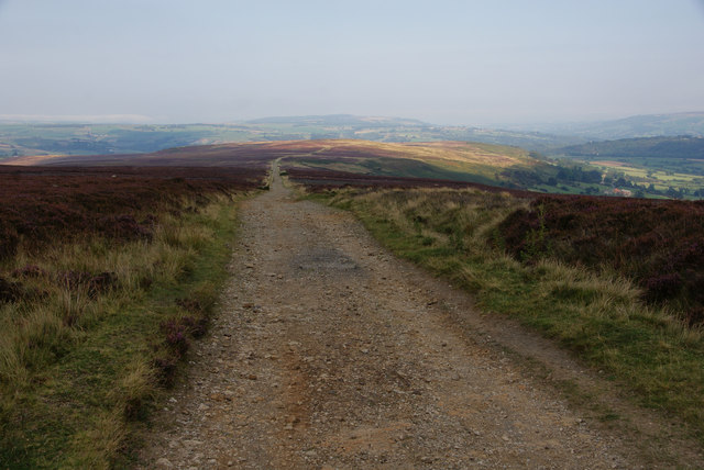 Track on Glaisdale Rigg