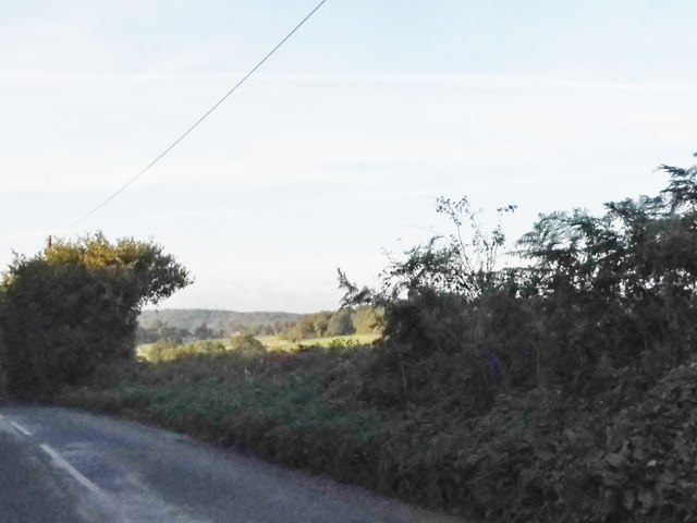 Looking towards the North Downs from Hound House Road