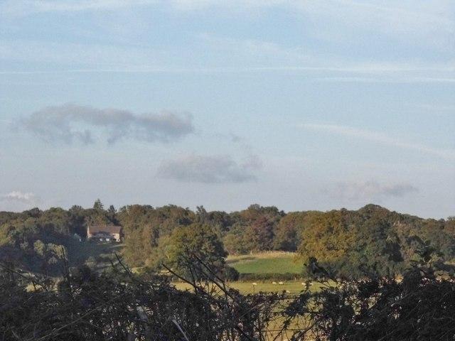 Farmland by Hound House Road