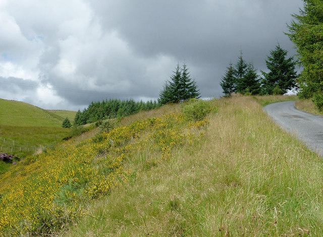 Moorland south-east of Llanddewi-Brefi, Ceredigion