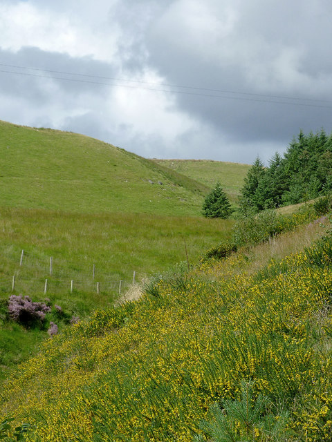 Moorland south-east of Llanddewi-Brefi