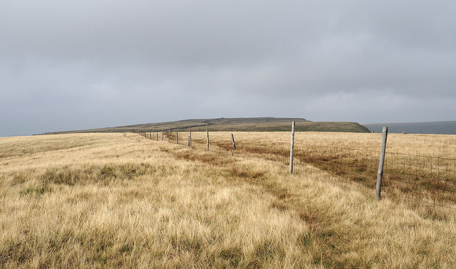 Fence line crossing Swarth Fell Pike