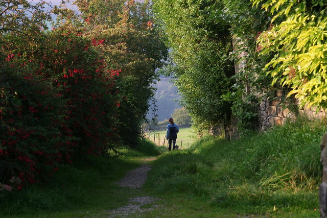 Padfield: footpath to meet the Longdendale Trail