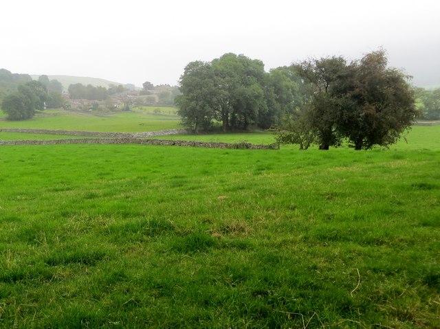 Farmland on the banks of the Wharfe
