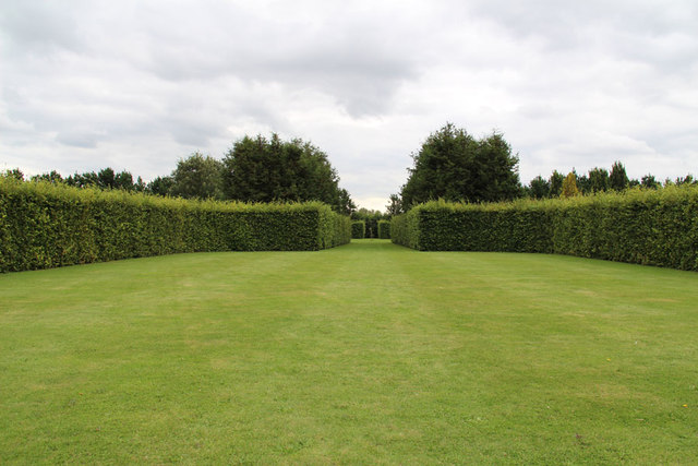 The Old Vicarage Gardens, East Ruston - Lawn