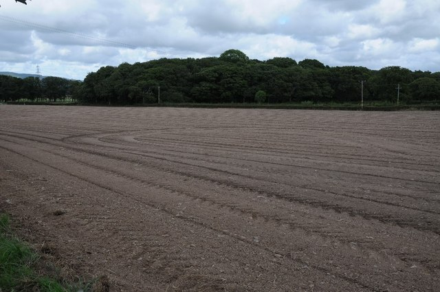 Arable field and Glascoed