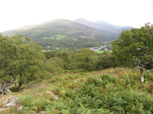 Hillside about Beddgelert