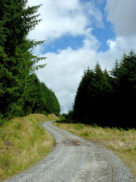Forestry road on Bryn Carregog, Ceredigion