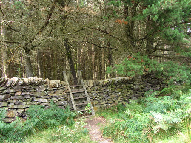 Ladder stile into Aberglaslyn Woods