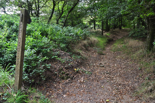 West Somerset : Footpath