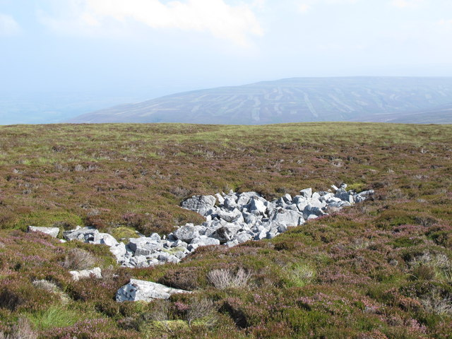 Rock outcrop on the Tindale Fells