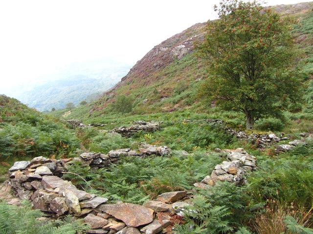 Sheepfolds in Cwm Bychan