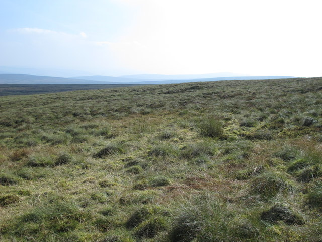 Moorland between Blackburn Head and Cold Fell