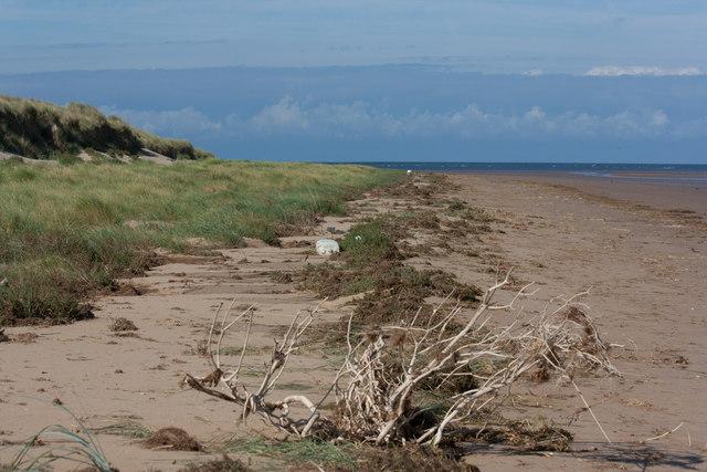 Strand line towards Thornham Point