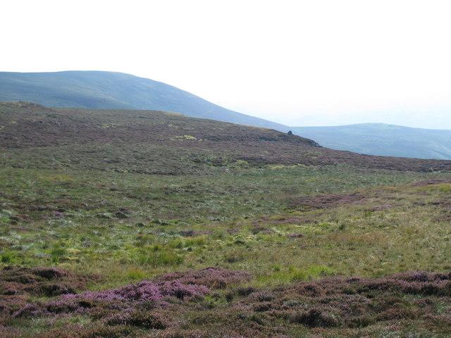 Moorland between Brown Fell and Tarnmonath Fell