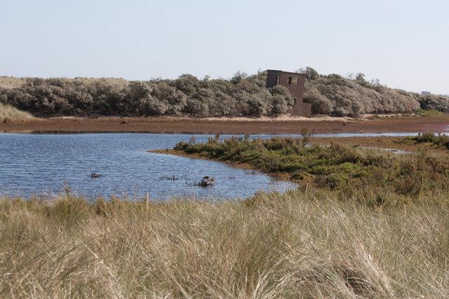 Saltmarsh draining after a high tide