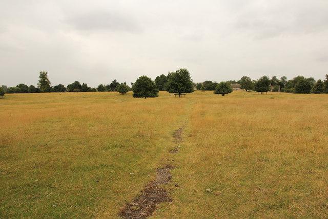 Pilton parkland