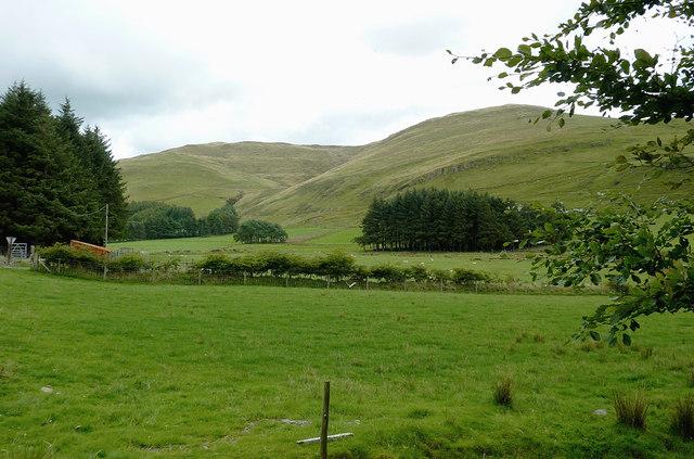 Dyffryn Castell near Ponterwyd, Ceredigion