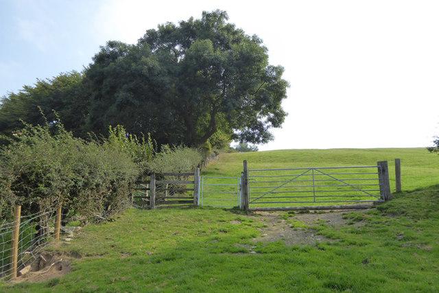 Offa's Dyke Path - its getting steep