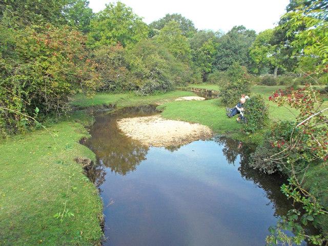 Mill Lawn Brook
