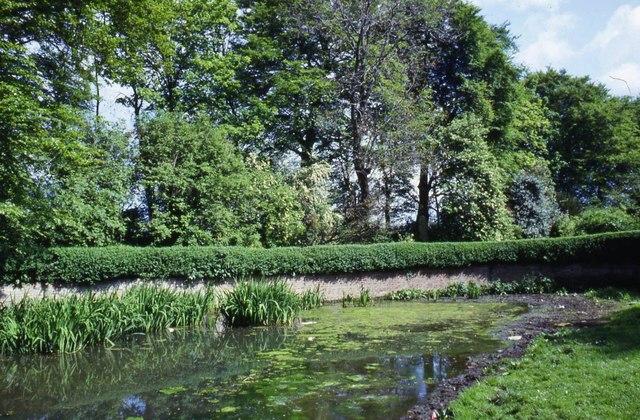 Ivy Lane, Hedon, Yorkshire