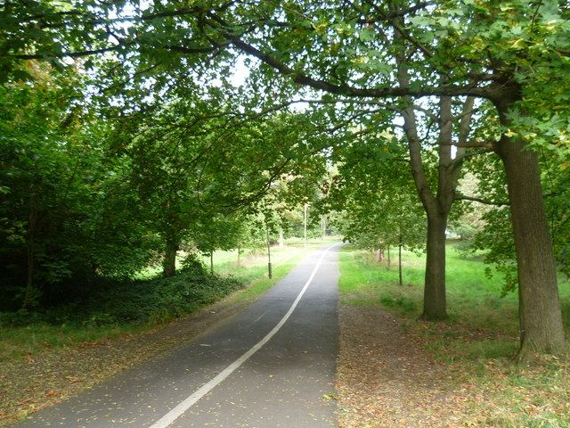 Cycle and pedestrian path on Tooting Graveney Common