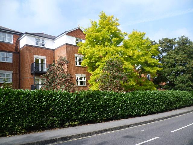 New housing estate next to Church Lane