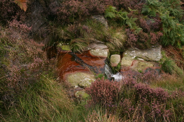 Iron-rich water of Oakenclough Brook
