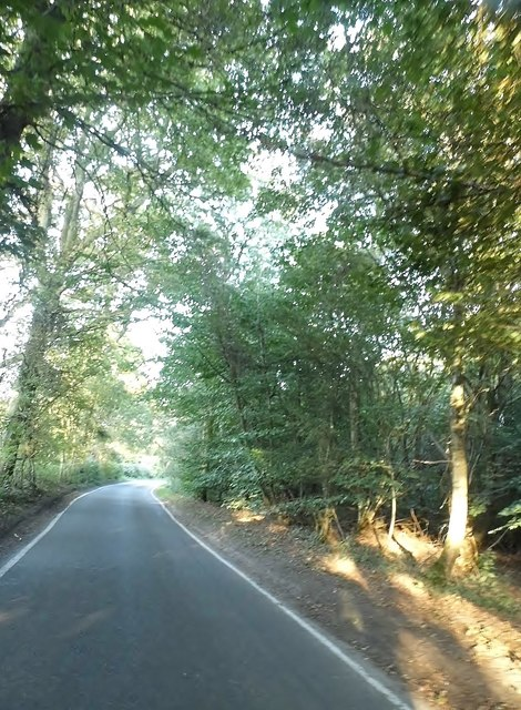 Combe Lane north of Shere