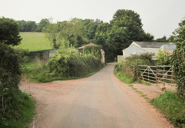 Lane at Middle Rocombe