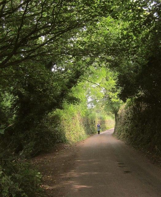 Lane, Rocombe